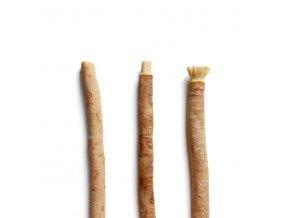 koren hlavni