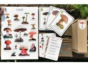 houbicky karty