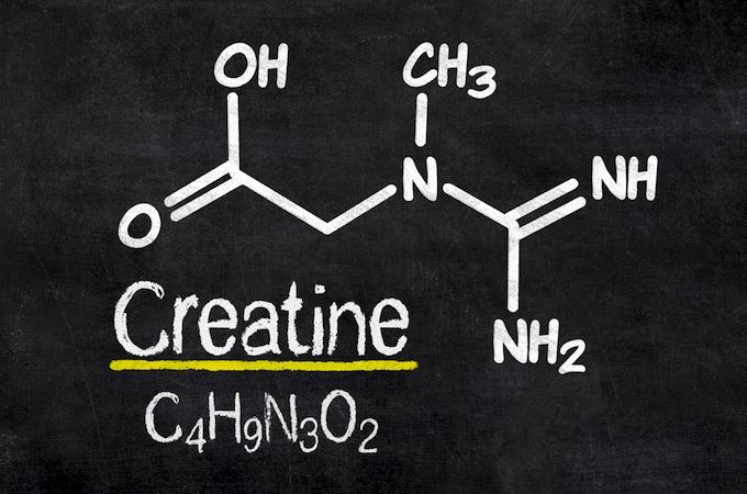 Kreatín - Kompletné informácie o kreatíne
