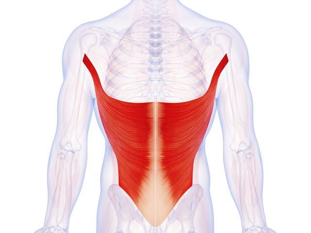 Cviky na chrbát (Latissimus)