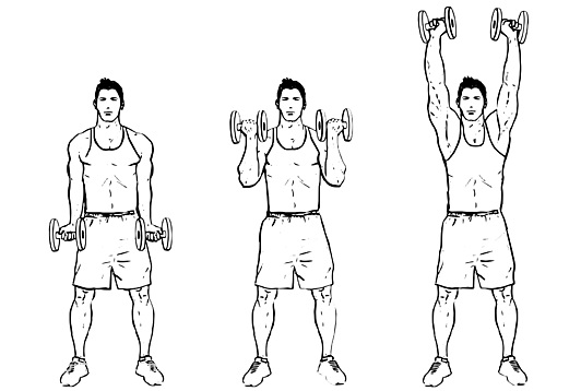 biceps+tlaky