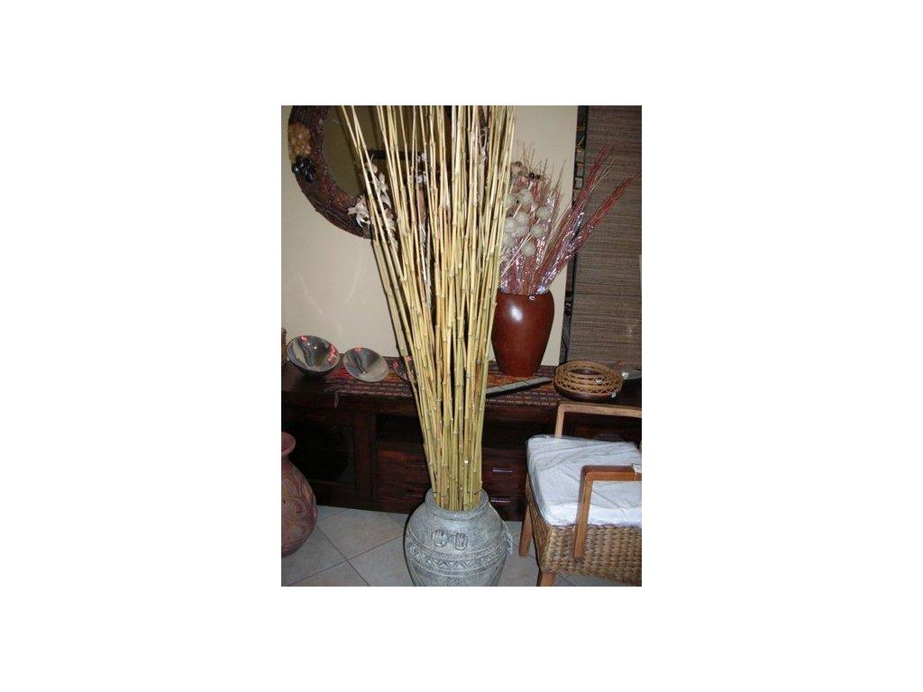 dekorační bambus S