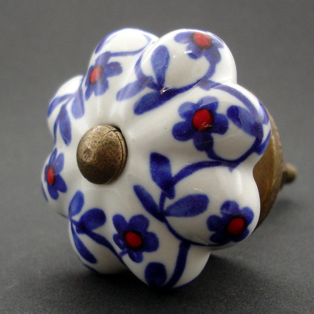 Keramická úchytka-Popínavky modročervené