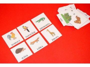rozvoj-slovni-zasoby-naucne-karty
