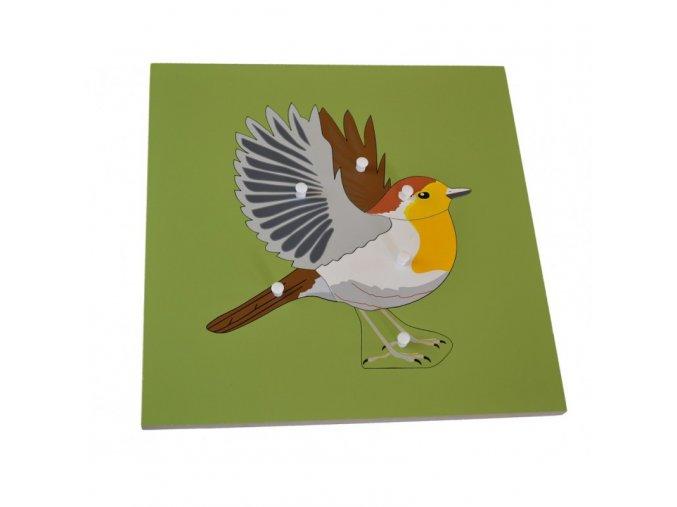 puzzle s kostrou ptak (1)