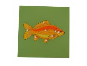 puzzle s kostrou ryba (1)