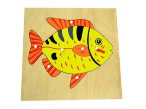 puzzle ryba (1)