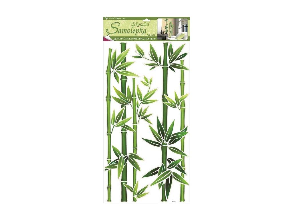Dekorace pokojová bambus zelený
