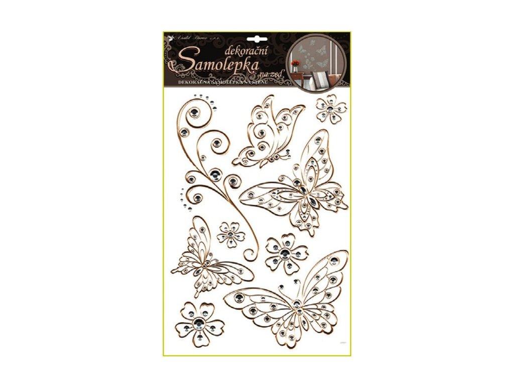 Dekorace pokojová motýl průhledný se zlatou konturou