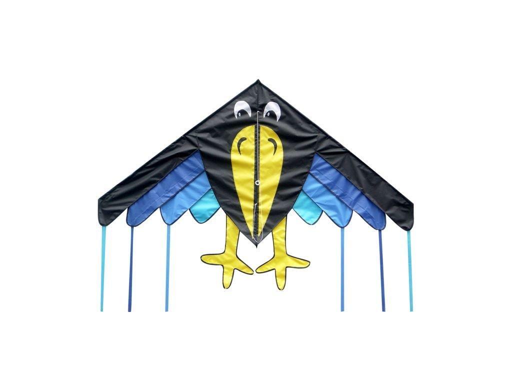 letajici drak vrana podzim