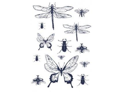 nazehlovaci obrazek hmyz