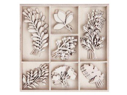tvary drevo listky