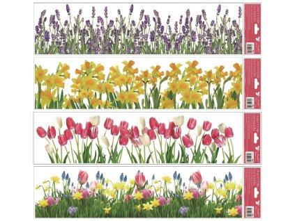 pruhy kvetiny