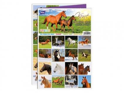 Pexeso 3xA4 Koně