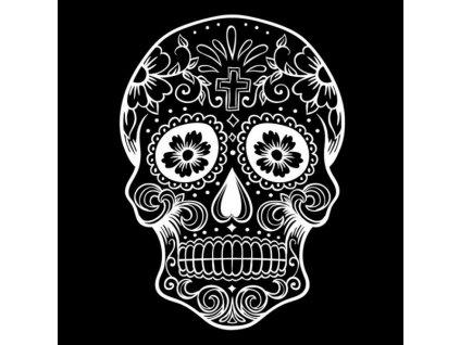 nazehlovaci obrazek bily mexicka lebka