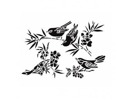 plastova sablona cadence ptaci