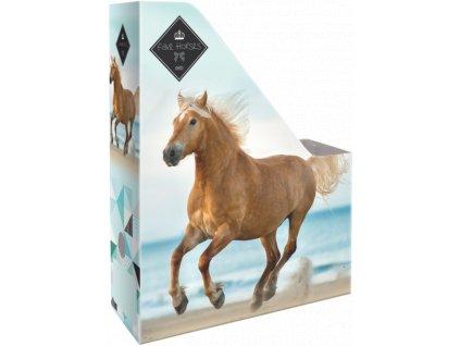 box na sesity A4 geo horse beach