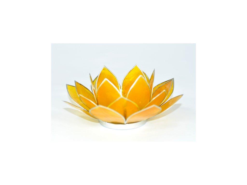Svícen lotos žlutý