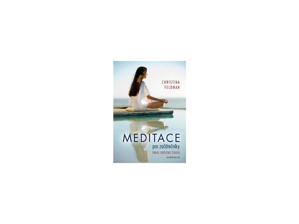 Meditace pro začátečníky. Praxe bdělého