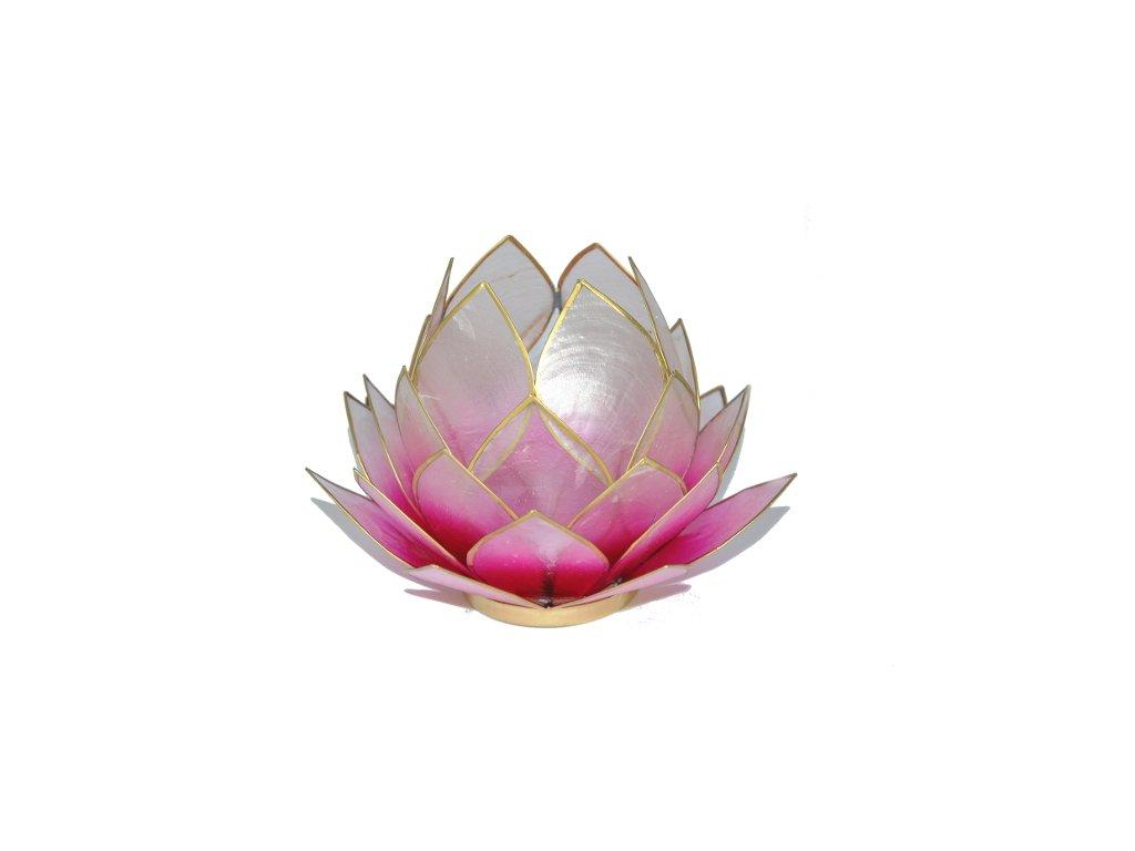 Svícen lotos velký růžovo-bílý