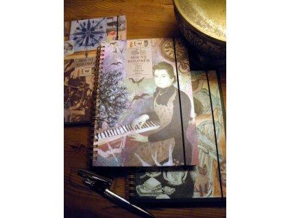 Poetický deník Lucie Čapkové (více druhů)