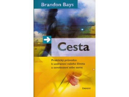 Cesta - Bays