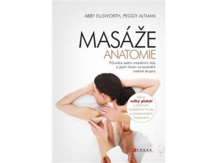 Masáže – anatomie