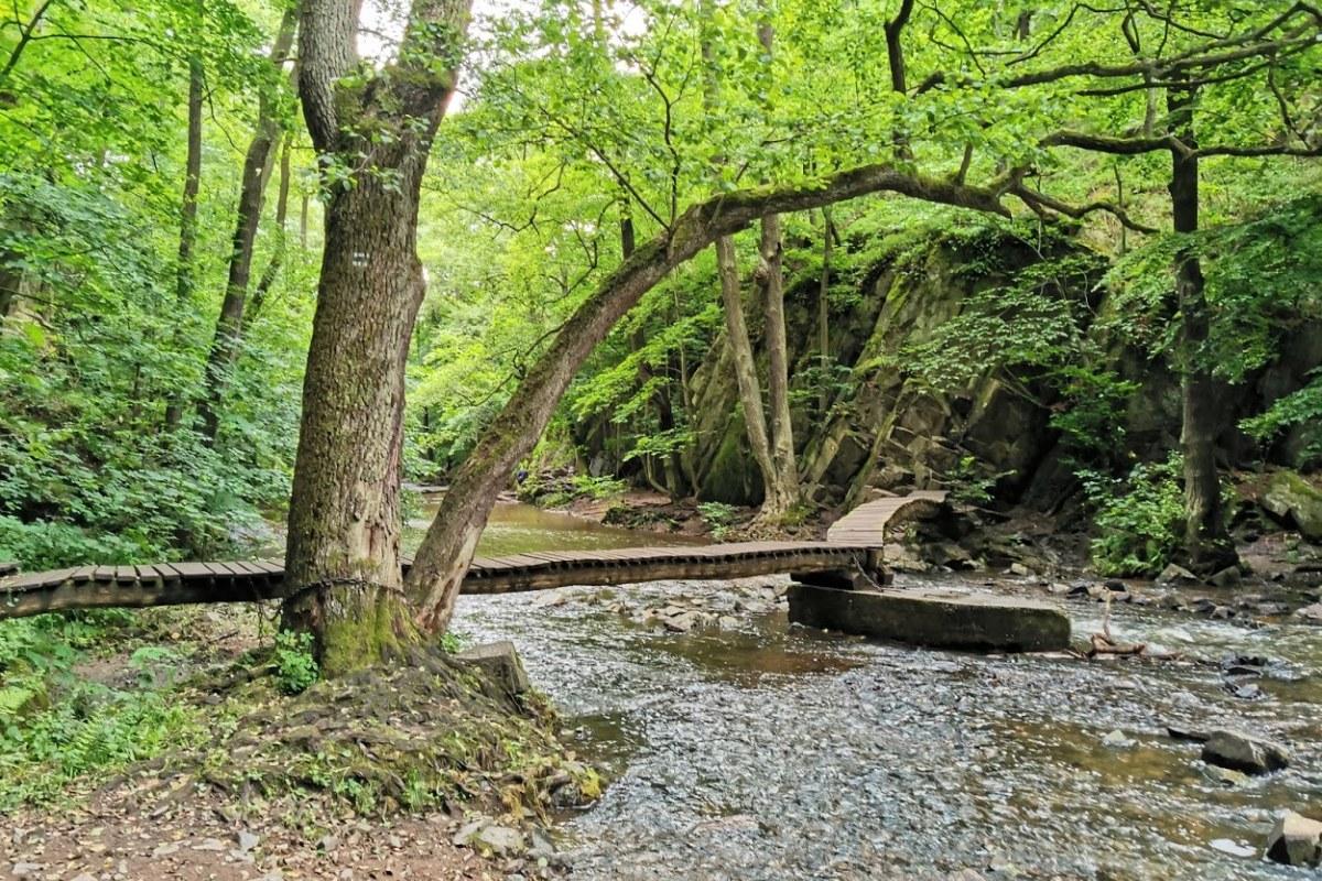 7 tipů na focení v přírodě
