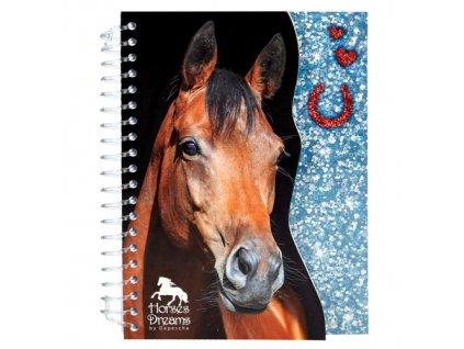 Zápisník Horses Dreams modré