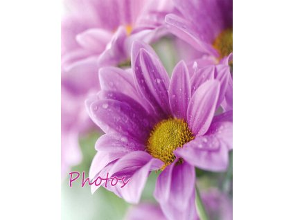 FOTOALBUM malé 9X13/36 fialové