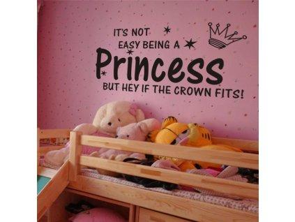 samolepky na zed princess 3