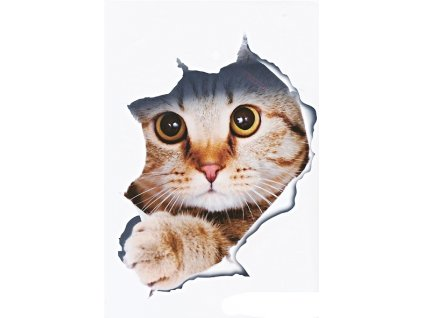 Samolepka na zeď 3D Kočka 21x16cm