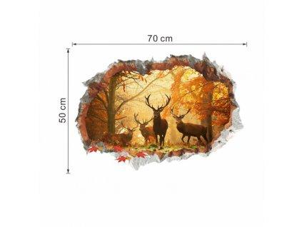 jeleni rozměry