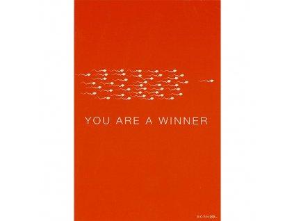 Vtipné blahopřání Born 2B - YOU ARE A WINNER