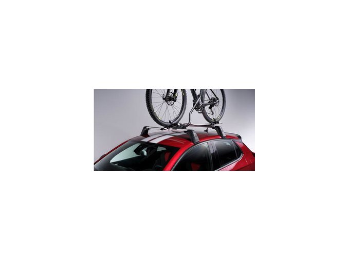 CORSA BIKE CARRIER THULE EXPERT 298 1642748780 SIZE4