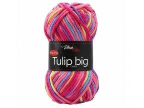 TULIP BIG COLOR 5601