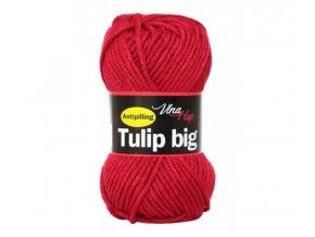 Tulip Big 4019