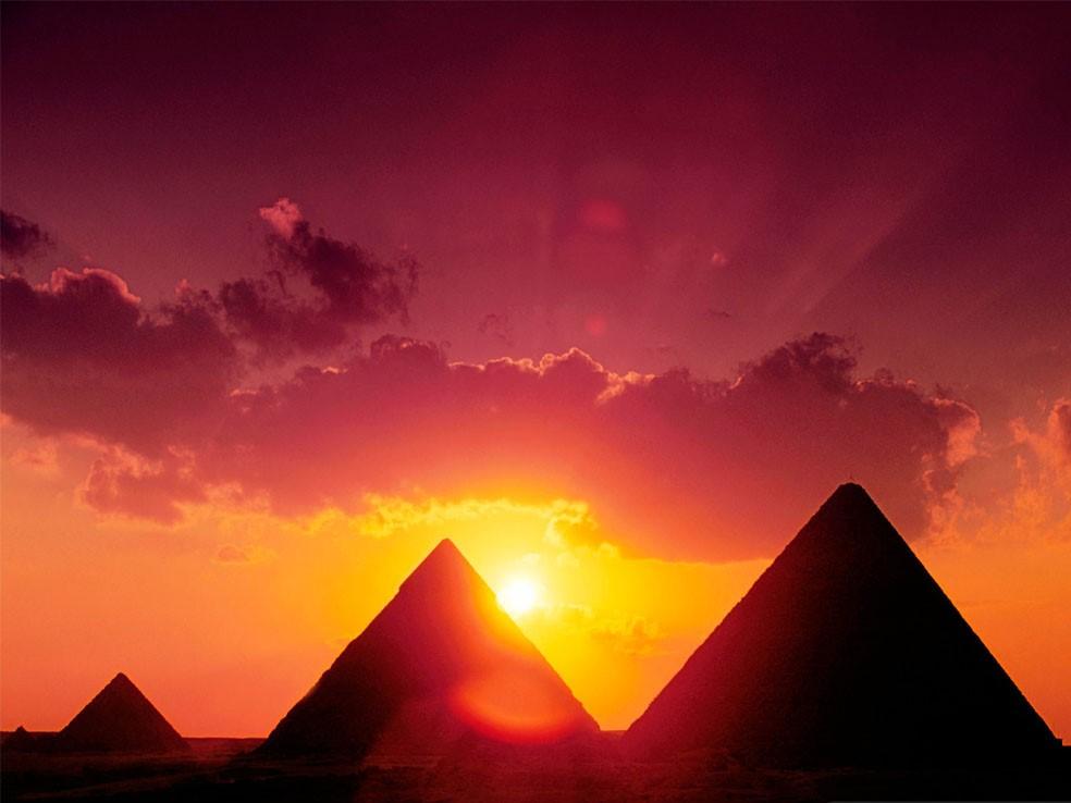 Egyptské pižmo