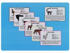 Zvířata světa infokarty nahled