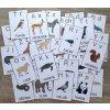 Zvířátková abeceda