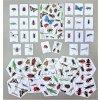 Hmyzí aktivity 2-4 roky