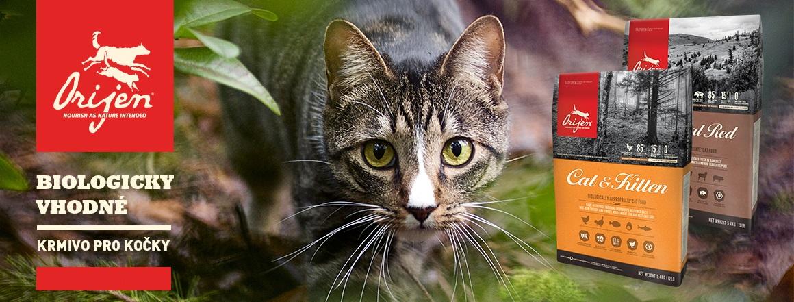Orijen cat