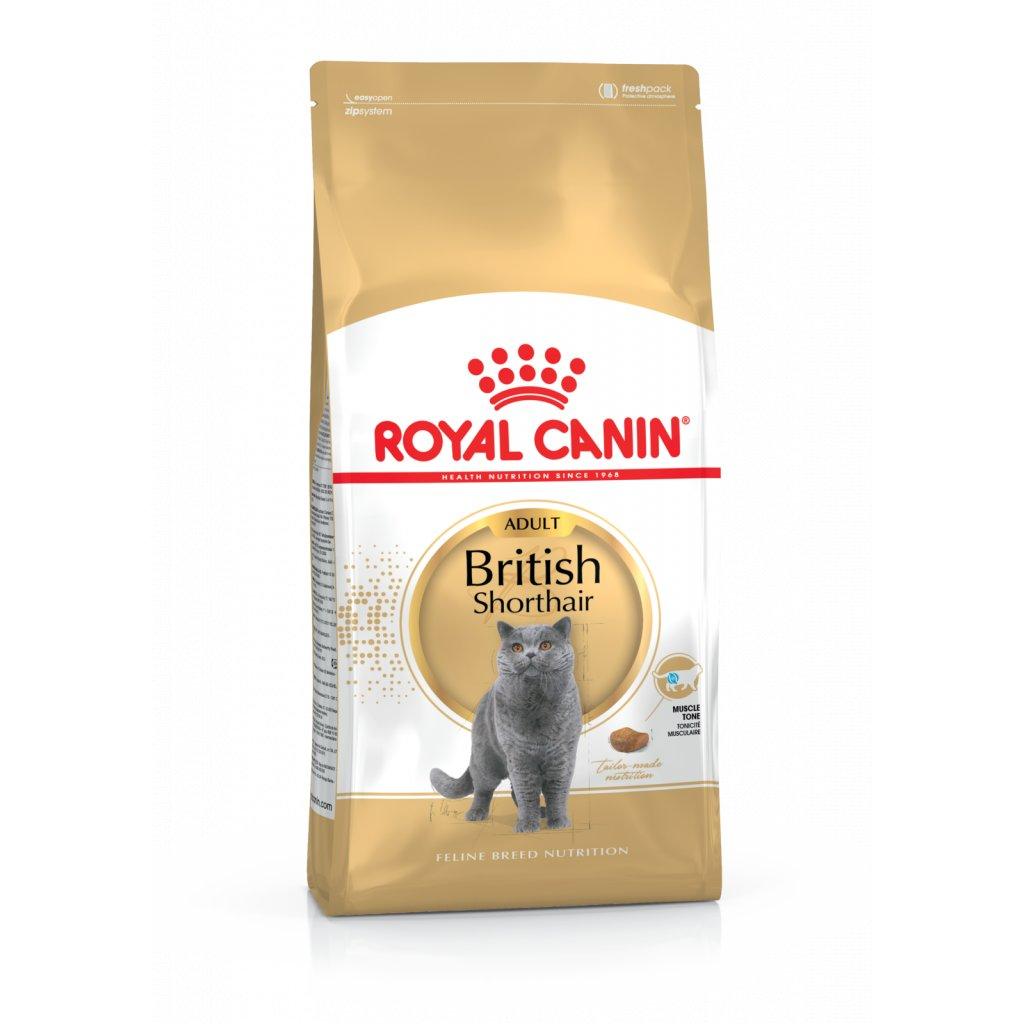 royal canin british adult
