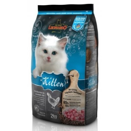 leonardo kitten