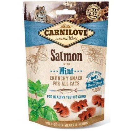 carnilove cat salmon crunchy