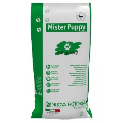 Mister Puppy lato fronte