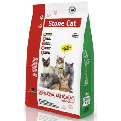 Stone Cat Fronte 754x800