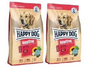 happy dog active