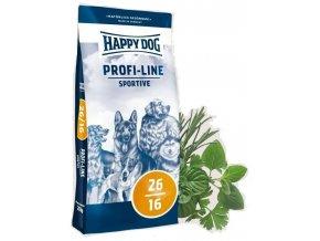 happy dog sportive