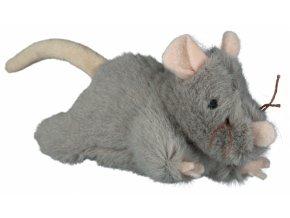 myš robusní